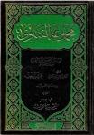 ibn taymiyyah 19